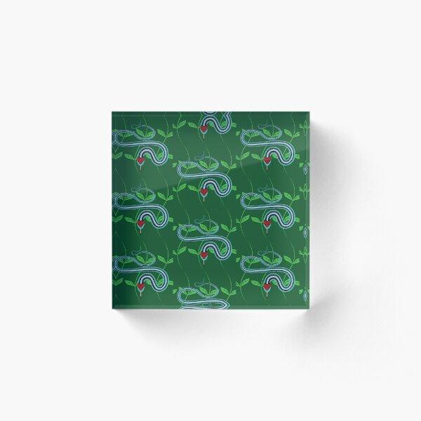 Snake Pattern Acrylic Block