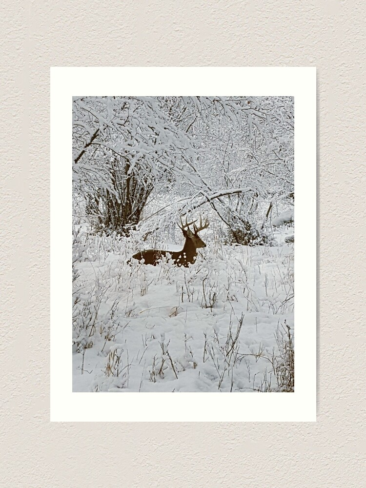 Alternate view of Deer in the Snowy Forest Art Print