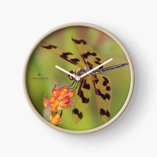Graphic Flutterer  Clock