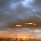 Double Rainbow by Breanna Stewart