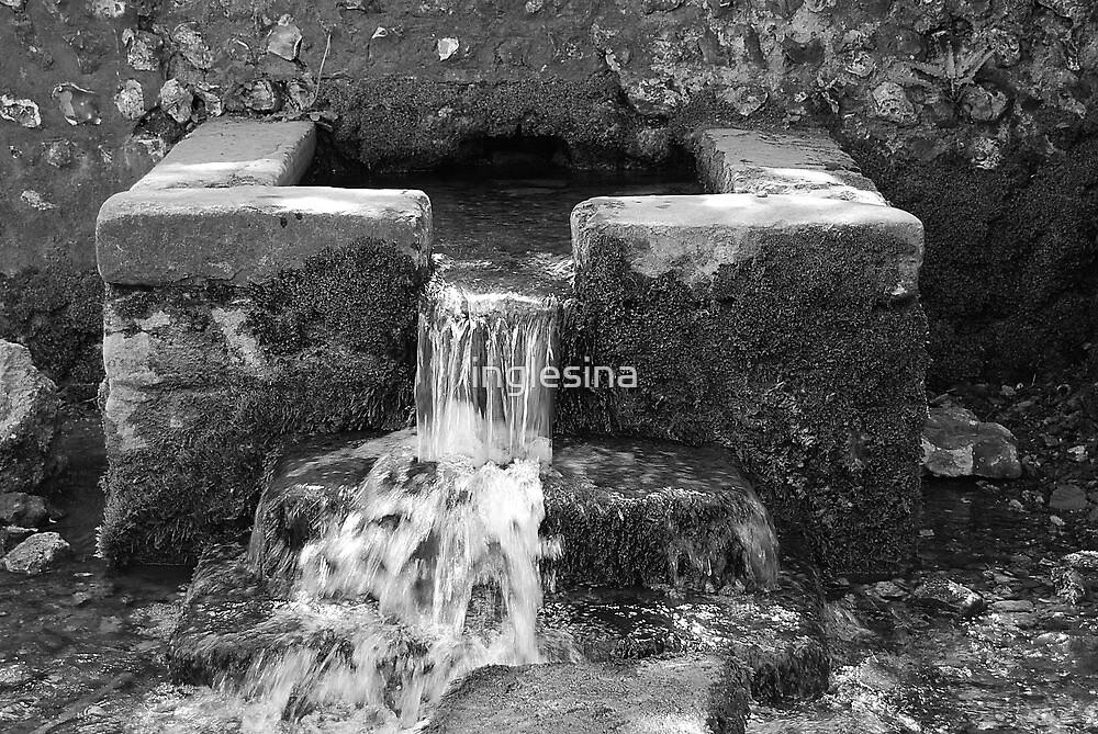 Water by inglesina