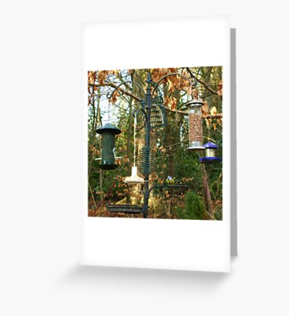 so much to choose from! Greeting Card