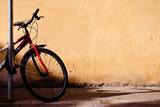 half of red bicycle by Victor Bezrukov