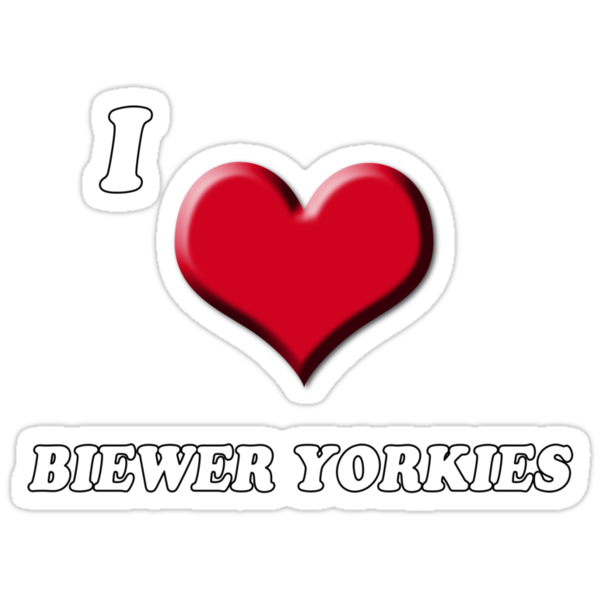 I love Biewer Yorkies by BrightBrownEyes