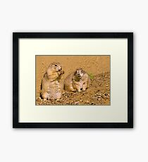 Dynamic duo Framed Print