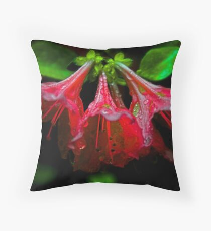Red flower II. Throw Pillow