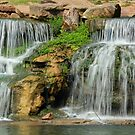 Waterfall - Spring Park, Tuscumbia, Alabama by DebbieCHayes