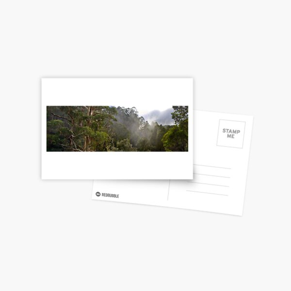 Tree Tops Postcard