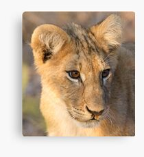 Runny Nose Canvas Print