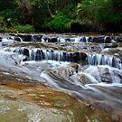 Oxford falls creek by Doug Cliff