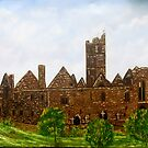 Quin Abbey County Clare Ireland by john shannon