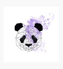 Purple Poly Panda Photographic Print
