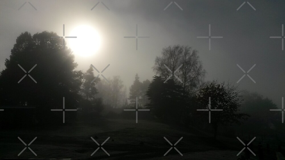 Foggy Sunrise by NixieNoo