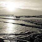 Morning Surf - Isle of Palms by Sherie LaPrade