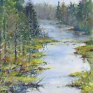 Middle River, South Shore, Nova Scotia by Chris Jessup