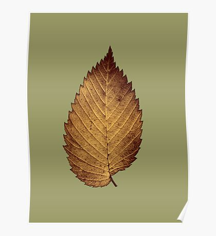 Bronzed Leaf Collection  Poster