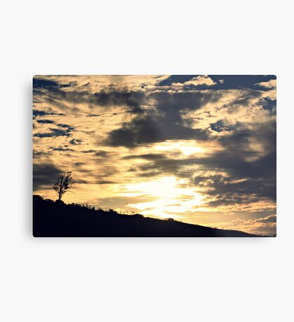 solace in the sweeping bow Metal Print