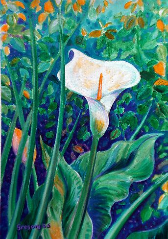 Arum lilies in Kirstenbosch Gardens. Cape Town, South Africa by Gregory Pastoll