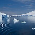 The Great White Continent by Krys Bailey