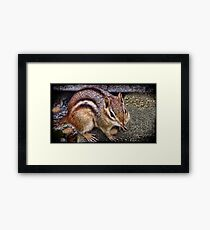 ⊱✿ ✿⊰⊹ ♧ ✿ Ok Take My Picture Then Let Me Eat ⊱✿ ✿⊰⊹ ♧ ✿ Framed Print