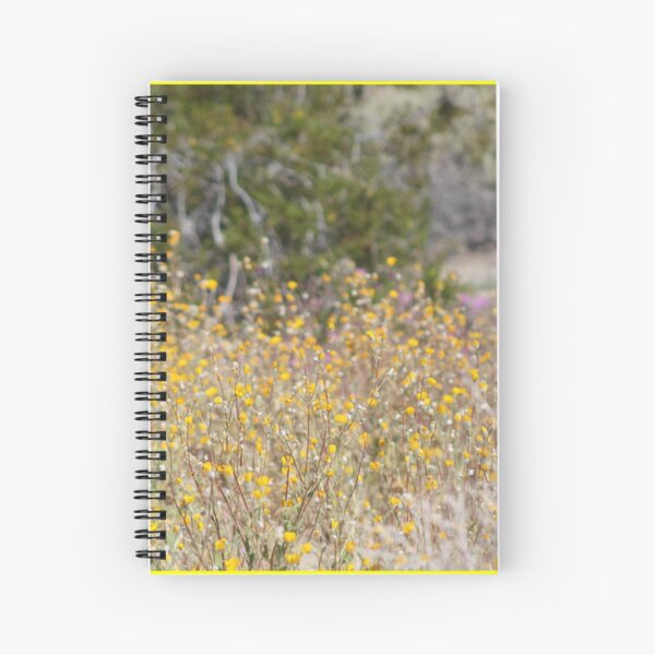 Close Up of Wild Desert Sunflowers Coachella Valley Wildlife Preserve Spiral Notebook