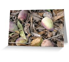 Nature #1 by Colleen Stevenson Greeting Card