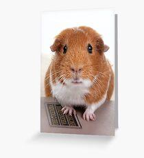 Guinea Pig Gets An Education  Grußkarte