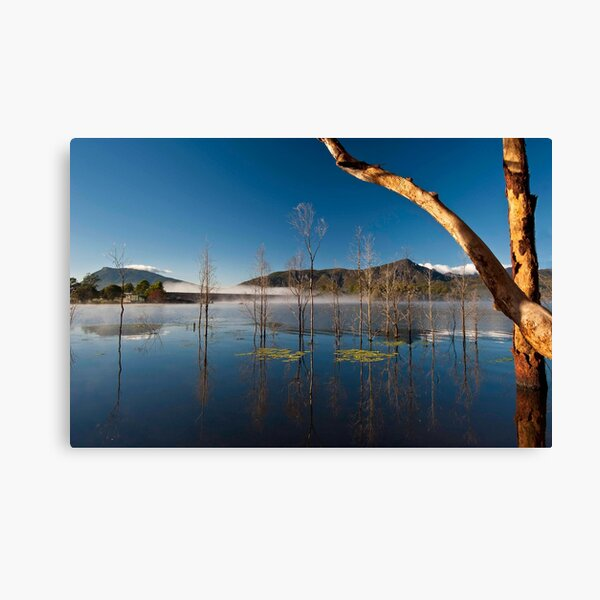 FIRST DAY OF WINTER Canvas Print