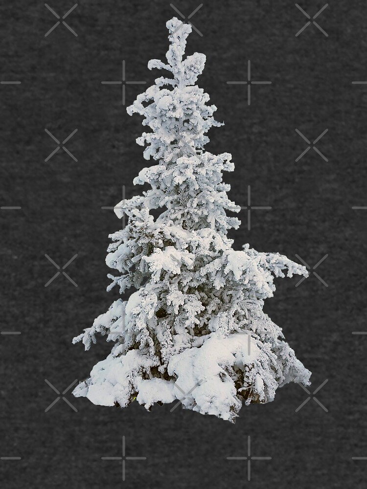 Frosty Tree on a Foggy Winter Day by EmilyBickell