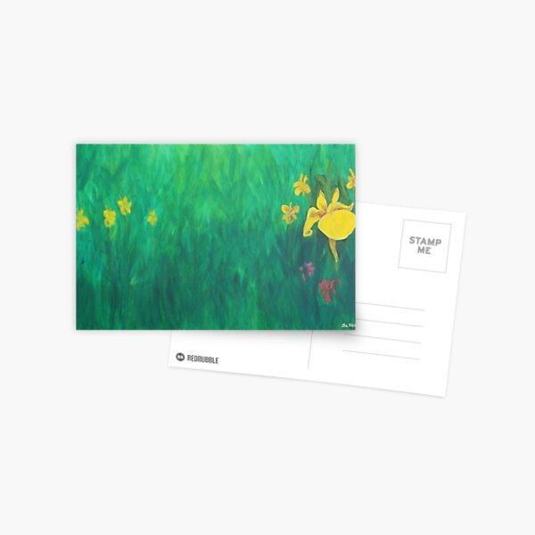 Yellow Iris. Postcard