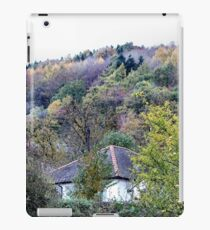 An allegory of colour iPad Case/Skin