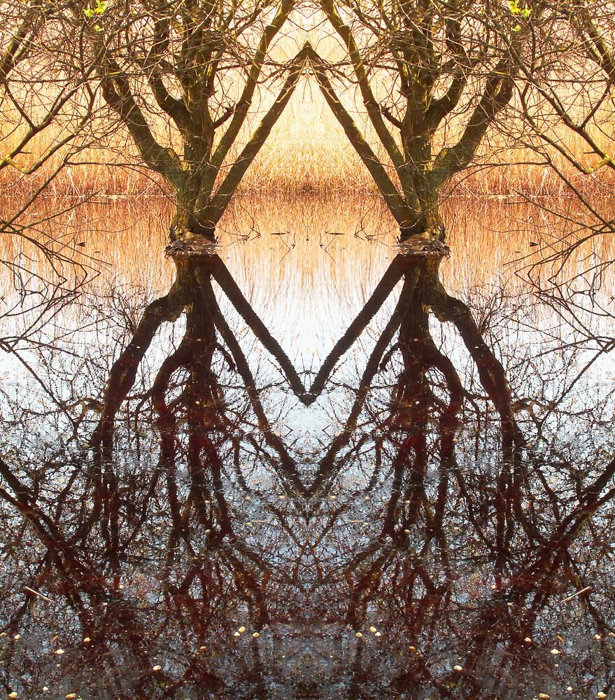 Homeless swamp by OrlogikStudio