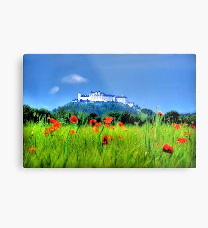 Salzburg Poppies Metal Print