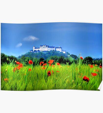 Salzburg Poppies Poster