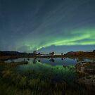 Aurora Polaris -1 by Frank Olsen