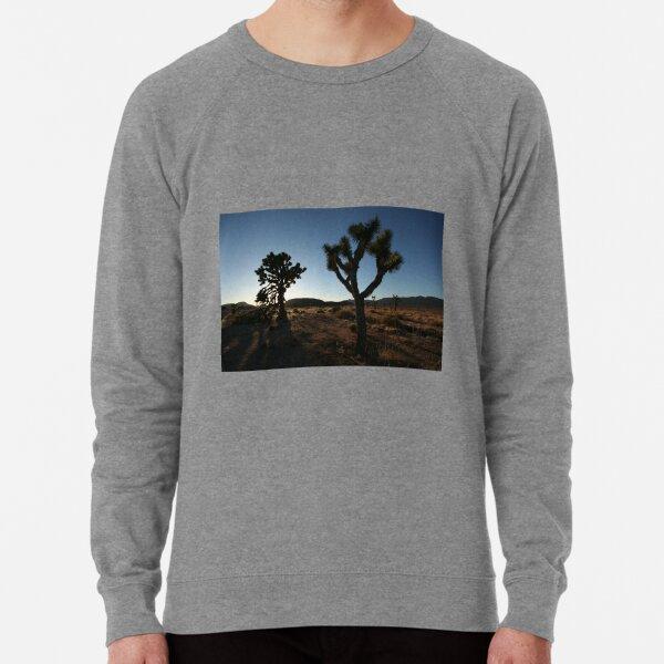 Into This Night I Wander Lightweight Sweatshirt
