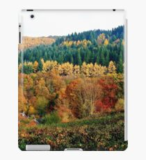 Allegory of colour iPad Case/Skin