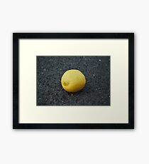 Bitter Lemon Framed Print