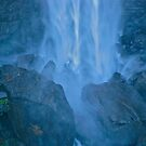 Force of nature  by Elvira