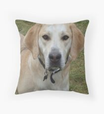 ScoobyDoo Throw Pillow
