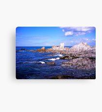 Devon coast by lee bay Canvas Print