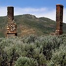 Once Upon A Time In The West - Tuscarora, Elko County, NV by Rebel Kreklow