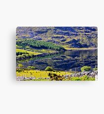 kerry reflections of Eire Canvas Print