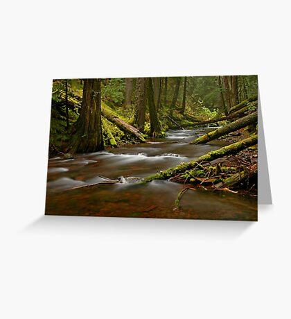 Panther Creek Landscape Greeting Card