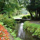 Holy Well in Sligo Ireland  by ClodaghSHiggins