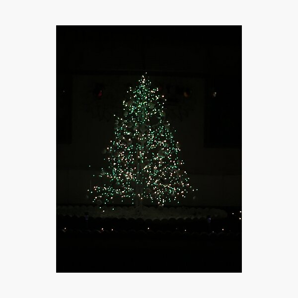 Christmas Tree Magic Photographic Print