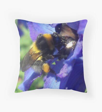 Bumblebee with pollen on delphinium Throw Pillow