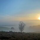 Broxhead Common Sunrise by relayer51