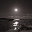 Moon Rise over Point Lowly by Owen65