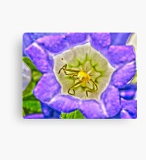 Purple Flower Macro - HDR Canvas Print